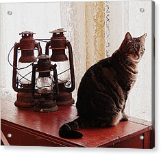 Stella In The Window Acrylic Print