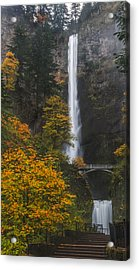 Step Up To Multnomah Acrylic Print