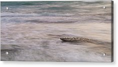 Acrylic Print featuring the photograph Stepping Stone by Alex Lapidus