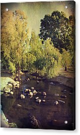 Stepping Stones To My Heart Acrylic Print by Laurie Search