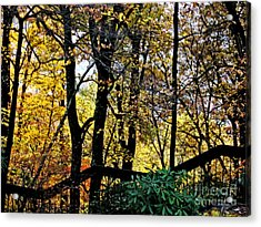 Steps Acrylic Print by Beebe  Barksdale-Bruner