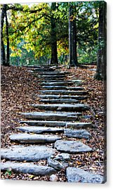 Steps Of Fall Acrylic Print by Lana Trussell