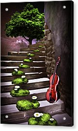 Steps Of Happiness Acrylic Print by Mihaela Pater