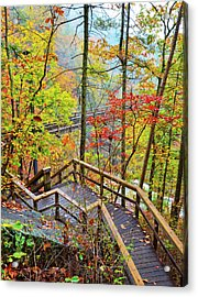 Steps To The Gorge Acrylic Print