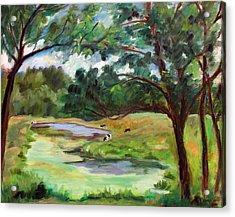 Stevenson Rd. Pond Acrylic Print by Ethel Vrana
