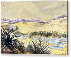 Sticker Landscape 3 Desert Acrylic Print by Karl Frey