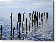 Acrylic Print featuring the photograph Sticks Out To Sea by Stephen Mitchell