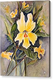 Sticky Monkey Flower Acrylic Print