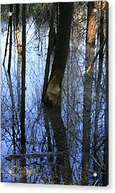 Still Acrylic Print by Alan Rutherford