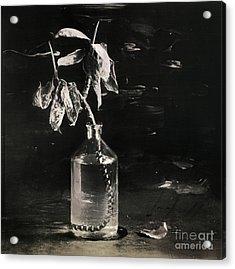 Still Life #141456 Acrylic Print