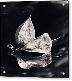 Still Life #14167 Acrylic Print