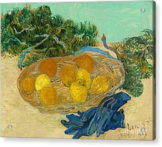 Still Life Of Oranges And Lemons With Blue Gloves, 1889 Acrylic Print