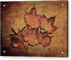 Still Life With Leaves Acrylic Print