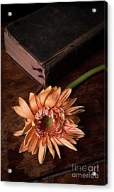 Still Life With Orange Flower And Old Bible Acrylic Print by Edward Fielding