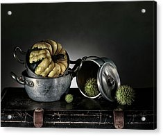 Still Life With Pumpkin Acrylic Print by Nailia Schwarz