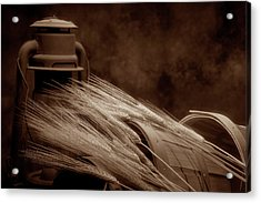 Still Life With Wheat I Acrylic Print by Tom Mc Nemar