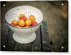 Still Life With Yellow Plums  Acrylic Print by Nailia Schwarz