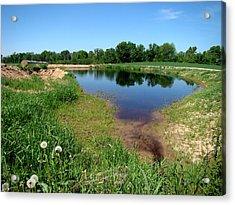 Still Pond Reflections Acrylic Print by Todd Zabel