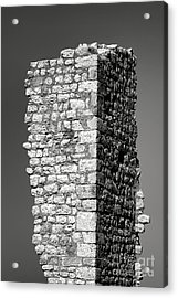 Still Standing Acrylic Print by Olivier Le Queinec