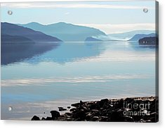 Acrylic Print featuring the photograph Still by Victor K