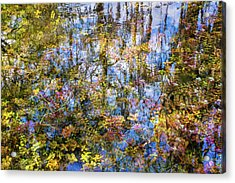 Stillness Holds Everything Acrylic Print