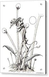 Stipplewalker Acrylic Print by J P Lambert