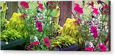 Stitched Flower Pot Photograph Acrylic Print by Laurie Kidd