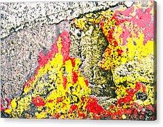 Stone Abstract Acrylic Print by Tom Gowanlock