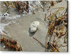 Stone At The Shore - South Beach Acrylic Print