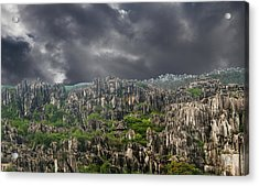 Stone Forest 3 Acrylic Print