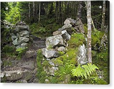 Stone Gate - Edmands Path - White Mountains New Hampshire  Acrylic Print by Erin Paul Donovan