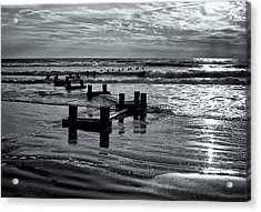 Stone Harbor Sunrise Acrylic Print by Tom Singleton