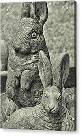 Stone Bunnies Acrylic Print by JAMART Photography