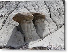 Stone Mashrooms Acrylic Print by Sergey  Nassyrov