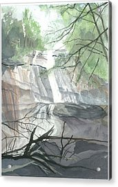 Acrylic Print featuring the painting Stone Mountain Falls - The Upper Cascade by Joel Deutsch