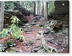 Stone Path Acrylic Print by Heather Green