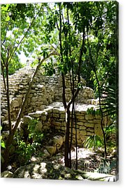 Acrylic Print featuring the photograph Stone Steps In The Jungle by Francesca Mackenney