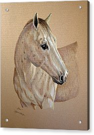 Acrylic Print featuring the drawing Stone by Suzanne McKee
