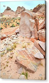 Acrylic Print featuring the photograph Stone Tablet In Valley Of Fire by Ray Mathis