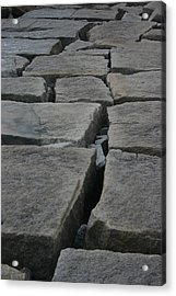 Stone Walk Acrylic Print by Dennis Curry
