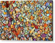 Stones And Barks On Beach Acrylic Print
