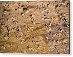 Stones In A Mud Water Wash Acrylic Print