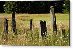 Stones In Summer Acrylic Print by Donna Meadows