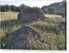 Stones In The Field Of Morning Acrylic Print