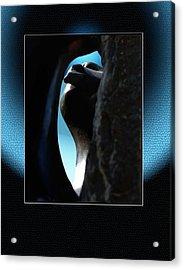 Stoneview Acrylic Print by Richard Gordon