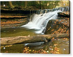 Acrylic Print featuring the photograph Stoneybrook by Timothy McIntyre