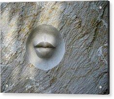 Stony Silence Acrylic Print