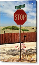 Acrylic Print featuring the photograph Stop For Naked Ladies by James Eddy
