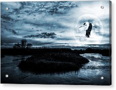 Acrylic Print featuring the photograph Stork In Moonlight by Jaroslaw Grudzinski