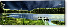 Acrylic Print featuring the photograph Storm Approaching The Pond by David Patterson
